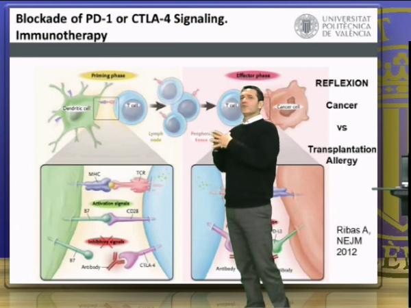 Coestimulación Negativa en TCR y BCR (parte II)