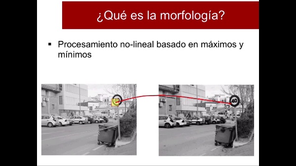 Morfología - 01 - Introducción