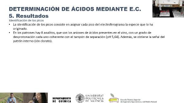 Determinación de ácidos en vino por EC. Resultados