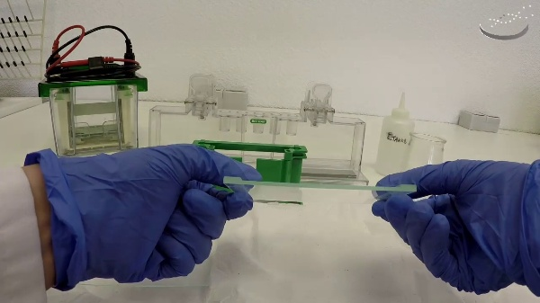 Assembly to prepare a polyacrylamide gel